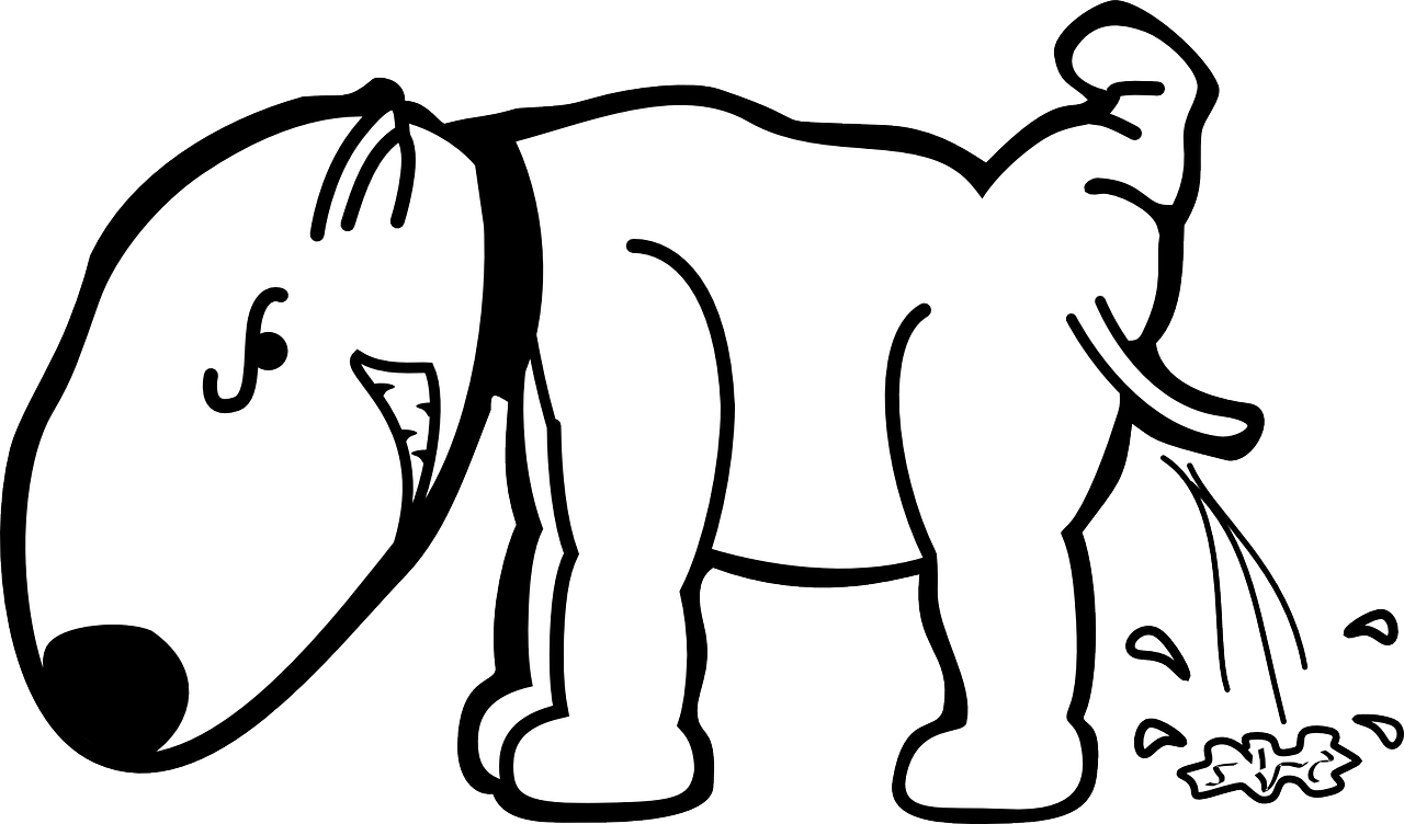 Stop a Dog from Peeing in the House
