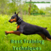 Best Dog Training Techniques-9 Great Tips