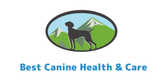 Best Canine Health And Care