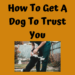 How To Get A Dog To Trust You