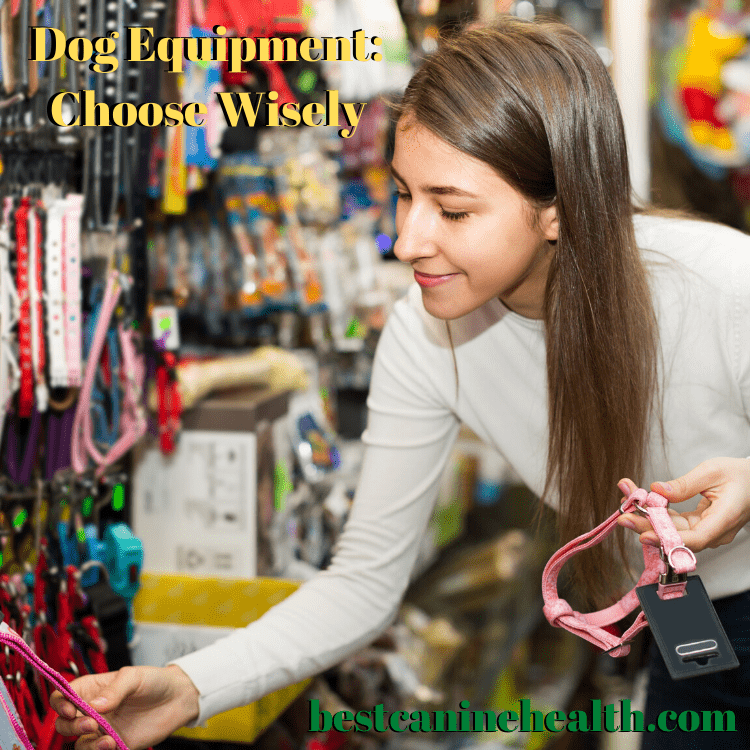 Dog Equipment