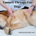 Emmett Therapy For Dogs
