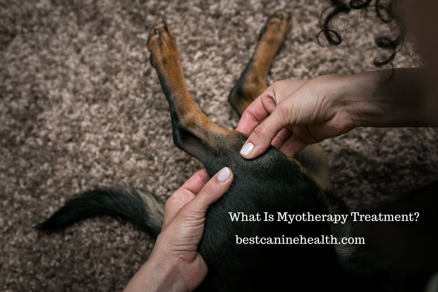 What Is Myotherapy Treatment?
