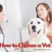 Hоw to Choose a Vet