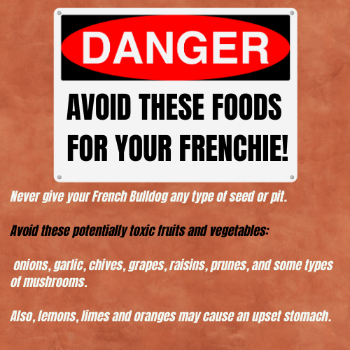 AVOID THESE FOODS FOR YOUR FRENCHIE!