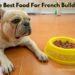 The Best Food for French Bulldogs