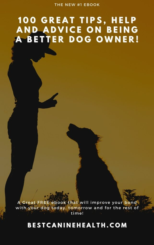 100 great tips, help and advice on being a better dog owner!