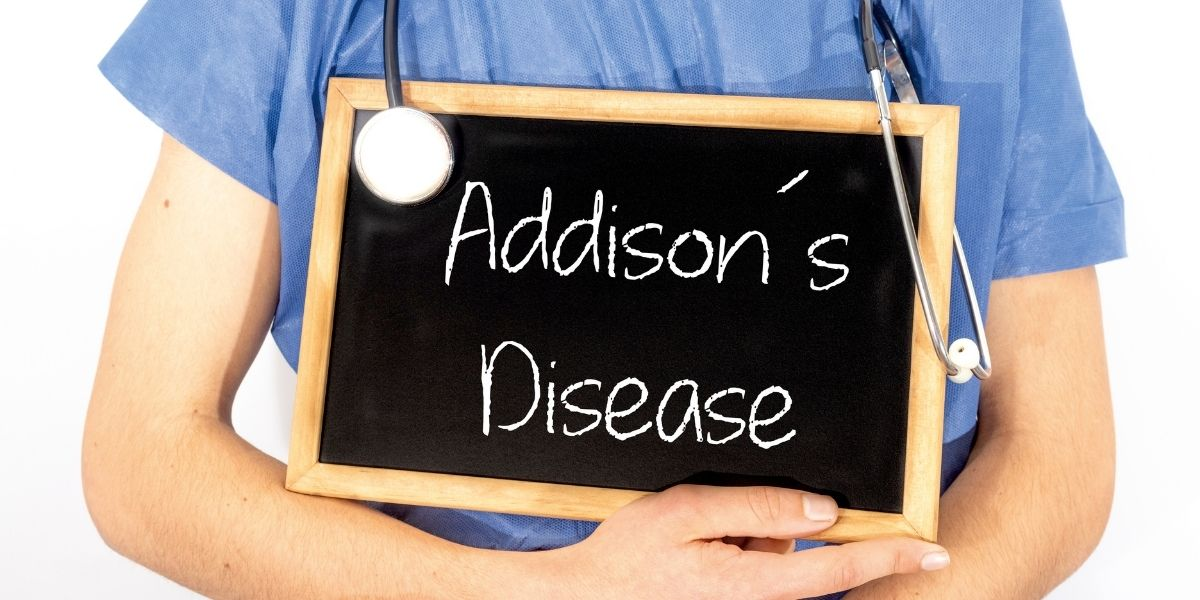 What Is Addison's Disease In Dogs