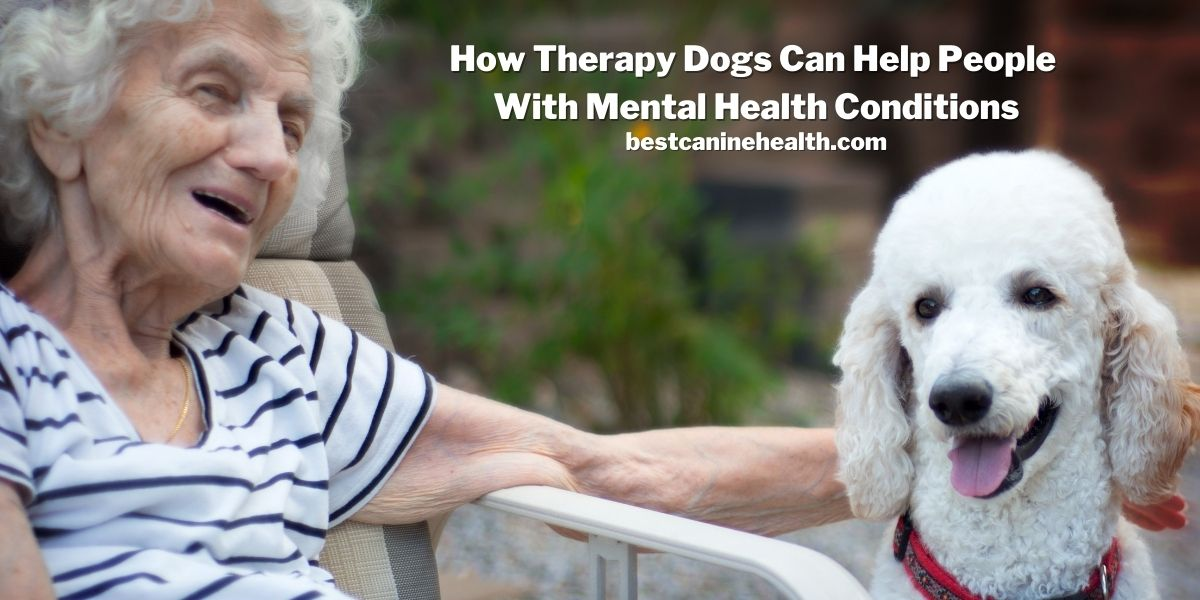 Dogs For Depression